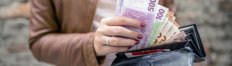 Polacy chcą zarabiać w Euro