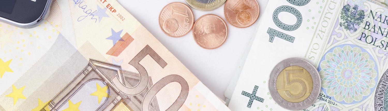 waluty euro PLN frank szwajcarski banknoty i bilon