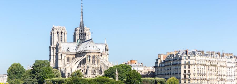 koszy życia we francji